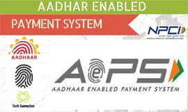 Aadhaar Enabled Payment System api white label